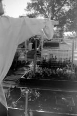 2017-04-23_17 (frasiec) Tags: kentmere400 canoneoselan7e reflectarubyscan