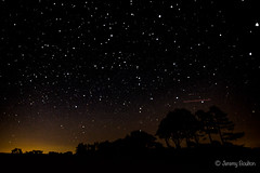 Easterly Sky (JKmedia) Tags: stars longexposure tripod trees dartmoor light pollution boultonphotography canoneos5dmkiii constellation myriad wrangaton ugborough sky night skyatnight landscape 15challengeswinner
