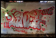 XE1S9051_tonemapped (jmriem) Tags: graffs graffiti graff colombes jmriem 2017 street art