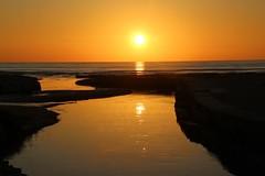 Sunrise on a clear day... (modestino68) Tags: alba sunrise mare sea sole sun riflessi reflects fiume river billevans