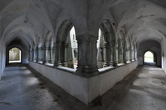 Symmetrical Architecture (Dave-B2012) Tags: old ireland abandoned church abbey architecture buildings nikon courtyard muckross countykerry unused d90 nikonflickraward