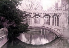 (sftrajan) Tags: bridge cambridge england 19thcentury bridgeofsighs neogothic picturesque stjohnscollege rivercam gothicrevival thebacks universityofcambridge gothicrevivalarchitecture nogothique henryhutchinson