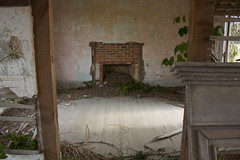 fireplace of a broken home (peculiarnothings) Tags: house abandoned home overgrown fireplace nest decay room entrance dirty