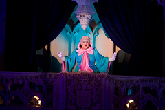 IMG_5729 (onnawufei) Tags: christmas disney disneyworld cinderella wdw waltdisneyworld magickingdom fairygodmother thefairygodmother