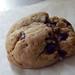 Artsy Chocolate Chip Hazelnut Cookie