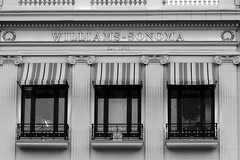 Building Exterior (shaire productions) Tags: sf sanfrancisco street windows urban blackandwhite bw building monochrome architecture buildings photography corporate photo exterior image monotone architectural financialdistrict photograph grayscale imagery greyscale shaireproductions