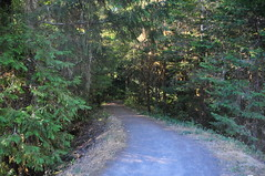 DEH_7116 (sobca) Tags: oregon river oakridge willamettenationalforest highway58 middleforkwillametteriver greenwaterspark 97463 greenwatertrail larisonrocktrail