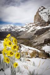 Colombia - el Cocuy (Steve Behaeghel) Tags: colombia andes boyaca nevados elcocuy pulpitodeldiablo