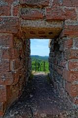 Chteau de Lutzelhardt - Bas Rhin (Vaxjo) Tags: france castle ruins alsace chteau castillo castelli ruines basrhin lutzelhardt