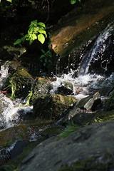Wasserfall Spritzer (oliverjensen1) Tags: park hessen wasserfall schloss fluss stein kassel herkules wilhelmshhe