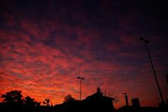 Alba sulle case a Padova (tampurio) Tags: city sunset sky italy panorama sun sunlight colors clouds sunrise landscape italia tramonto nuvole cityscape alba cielo tramonti sole paesaggi paesaggio padova mattina padua veneto canello tampurio
