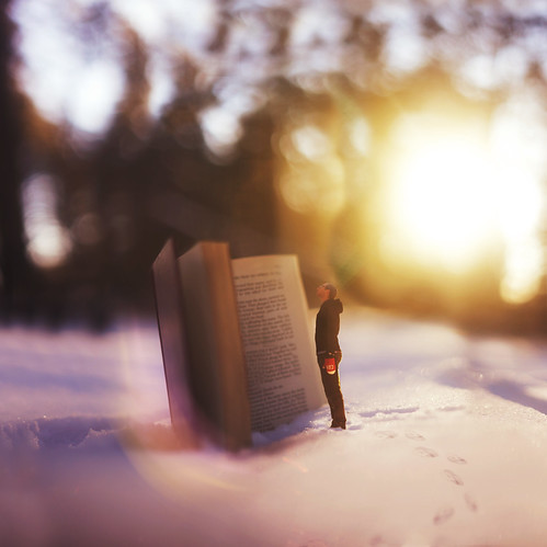 Finding Warmth In Winter
