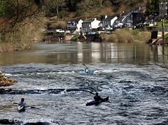 Rapids at Symonds Yat on the River Wye (Christopher Smith1) Tags: uk horizontal river inn head canoe rapids herefordshire yat symonds wye the saracens