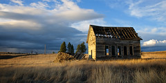 tumble-down school (Flint Roads) Tags: road old school trees sunset usa abandoned field grass clouds rural washington decay faded wa lonely roadside forsaken schoolhouse sunsetlight telephonepole deteriorate highplains reardan rainshadow