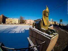 Sphinx in the snow (amm78) Tags: 2017 penf samyang75mmf35umcfisheyemft stpetersburg city fisheye mirrorless olympus samyang sanktpeterburg saintpetersburg russia ru