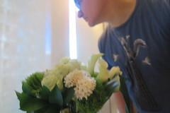 IMG_6470 (Mud Boy) Tags: nyc newyork brooklyn downtownbrooklyn boerumhill flowers clay clayhensley clayturnerhensley