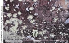 Grave Marker, Toribeno, Kyoto (jwvraets) Tags: kyoto japan toribeno cemetery tombstone gravemarker lichen pink texture opensource rawtherapee gimpnikon d5000 nikkor18105mmvr