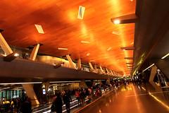 Doha Airport 20 (David OMalley) Tags: qatar doha airport hamad international