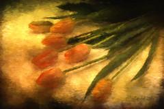 Tulips Renoir Style (clabudak) Tags: flowers tulips painting renoir texture painterly stilllife artistic