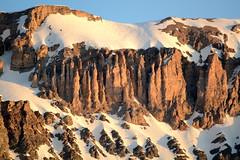 LEO_7522m (MILESI FEDERICO) Tags: milesifederico milesi montagna italia italy iamnikon inmontagna piemonte piedmont primavera wild nikon nikond7100 nital natura nature nat visitpiedmont valdisusa valsusa valledisusa valliolimpiche alpi alpicozie altavallesusa altavaldisusa europa europe d7100 dettagli 2017 cittàmetropolitanaditorino salbertrand