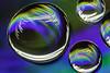 Abstract Drops (mikhailkorzhalov) Tags: canon macro macrorings water waterdrops drops abstract colors colorful experiment experimental longexposure russianlens m42