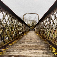 POTD:  Walk this way (Caroline Oades) Tags: iphone5s enlight stripes lines planks wood pedestrianwalkway