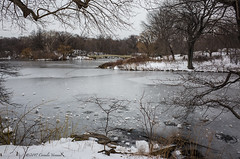 On Frozen Pond (CVerwaal) Tags: centralpark thelake winter newyork ny usa bowbridge ricohgr