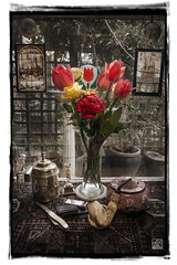 L1032571 Tulips from Amsterdam (SaltydogJacko) Tags: stilllife flowers tulips tabletop pipe textured leica