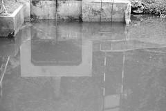 Reflection (vokasional) Tags: nikkor1855mm