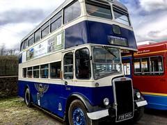 BRB 3340 / FDB 340C (TEN6083) Tags: springwellvillage bowesrailway leyland fdb340c 3340 brb bus nebuses