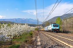 Tris di EU (Damiano Piovanelli) Tags: railtractioncompany railtracioncompany treno treni locomotiva lok ferrovie bahn brennero brenner eu43001 eu43