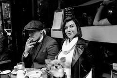 Untitled Strangers (Robert Bosson) Tags: soholondon soho berwickstreetsoho streetphotography strangers streetscene cafe londoncafe dog coffeeandcigarette lapdog london uk