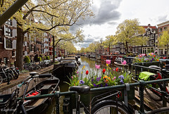 Amsterdam. (alamsterdam) Tags: holland amsterdam brouwersgracht canal architecture bridge bikes houseboats flowers