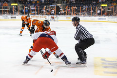 "Missouri Mavericks vs. Allen American, March 22, 2017, Silverstein Eye Centers Arena, Independence, Missouri.  Photo: © John Howe / Howe Creative Photography, all rights reserved 2017 • <a style=""font-size:0.8em;"" href=""http://www.flickr.com/photos/134016632@N02/33565523176/"" target=""_blank"">View on Flickr</a>"