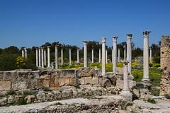 DSC_0252 (mark.greefhorst) Tags: cyprus northerncyprus salamis ancientworld roman