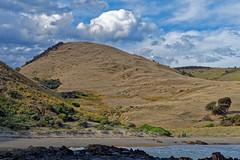 Climbed that hill @ Blowhole beach (Windogxx) Tags: hill clouds beach shoreline blowhole southaustralia australia