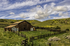 Carrizo Plain National Monument Barn (punahou77) Tags: carrizoplainnationalmonument nationalmonument landscape california clouds camping wildflower barn grass nature nikond500 punahou77
