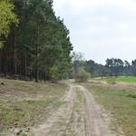 Fläming Rundwanderweg 41 rund um Rädigke thumbnail