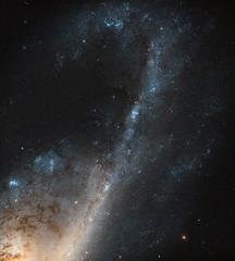 Hubble Sees Starbursts in Virgo (NASA's Marshall Space Flight Center) Tags: nasa nasas marshall space flight center nasa's goddard hubble telescope solar system beyond starburst galaxies galaxy universe ngc4536