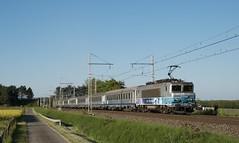 BB 22391 et rame Corail réversible (SylvainBouard) Tags: train railway sncf bb22200