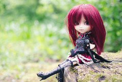 Elenore (Aienhime) Tags: pullip doll groove elenore laura rewigged