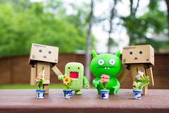 Toys Earth Day (vmabney) Tags: earthday toys danbo danboard domo