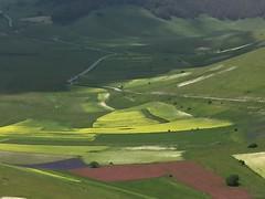 Castelluccio di Norcia. (coloreda24) Tags: 2016 castellucciodinorcia norcia perugia umbria