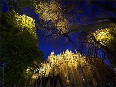 Contaminación lumínica (Nufus) Tags: olympus omdem1 microed714 nocturna iluminacion catedral contaminacionlumínica focos vidrieras ´shertotegenbosch holanda