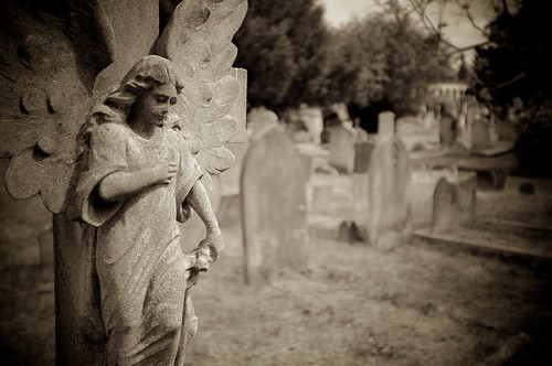 From flickr.com: Brompton Cemetery {MID-112681}