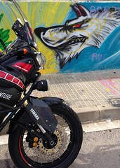 El Lobo feroz!!! 🐺 (carlesbaeza) Tags: adventure adventurerider advrider bigtrail biker dualsportlife dualsport travel motobiker moto motorcycle motorrad yamaha xt1200z supertenere xladv grafiti llop lobo wolf
