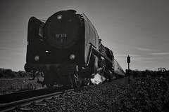 "Schnell-Dampf-Lok 01 118 - Dampfsonderzug ""Pfälzer Wald"" am 30.04.2017 (matthiasczekalla) Tags: schwarzweis blackandwhite bw dampf zug acros fuji x100 x100f steam train"