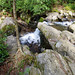 Grotto Falls Hike (Great Smoky Mountain National Park)