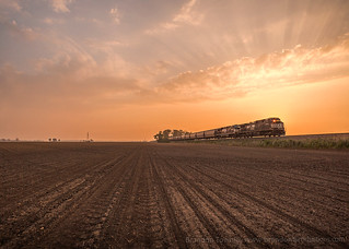Morning Grain Train