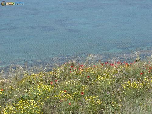 KR-Isola Capo Rizzuto-parco marino Capo Colonna 09_L